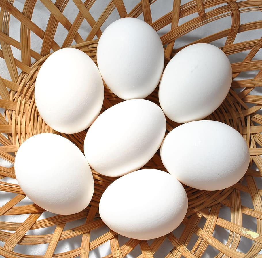 How to create organic pesticide using Eggs