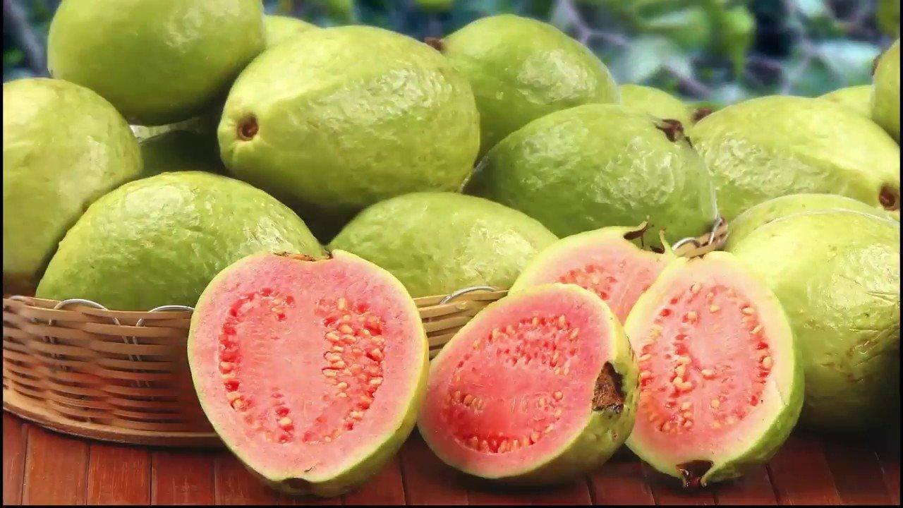 Vitamin-C food boost immunity