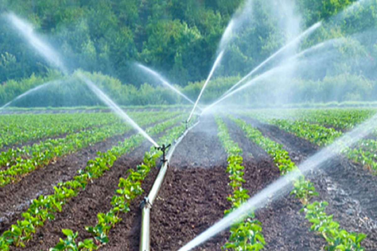 100% subsidy for Drip Irrigation