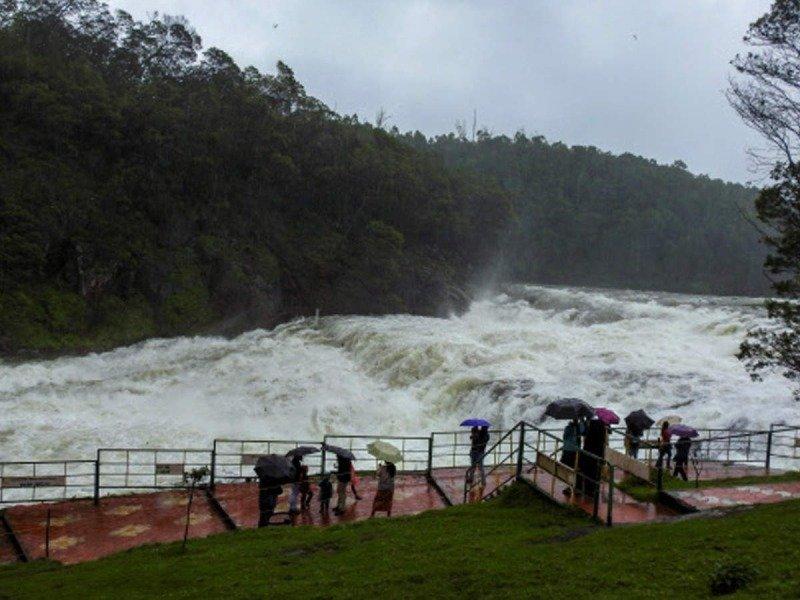Nilgiris gets highest rainfall