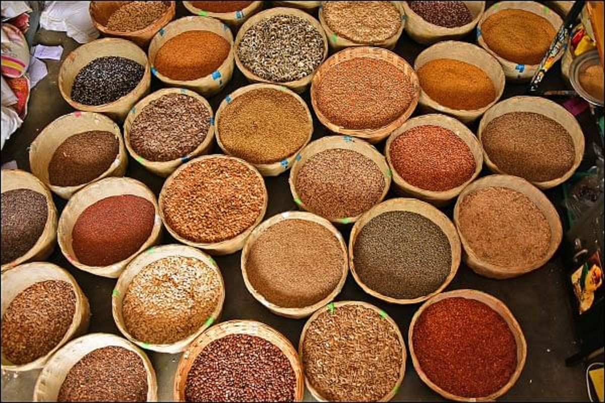 Vegetable Seeds With 40% Subsidy