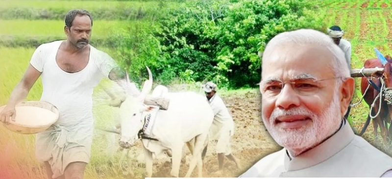 how to check balance in pmkisan