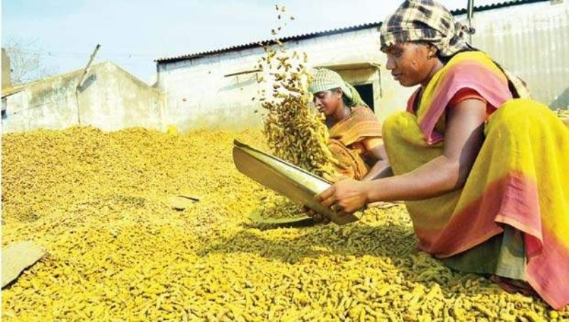 Financial assistance up to Rs 10 lakh for food processing companies