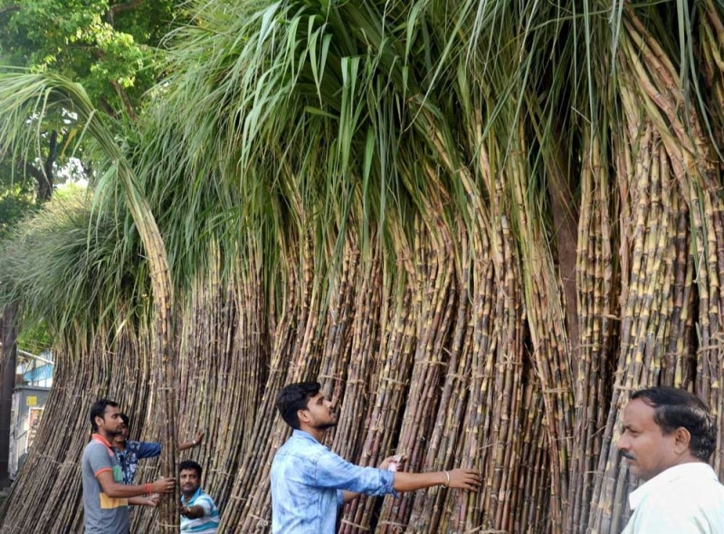 excess sugarcane for ethanol production