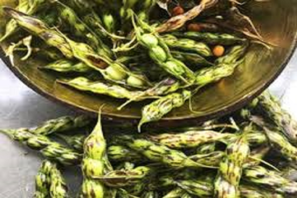 Sept.15 is last date to crop insurance