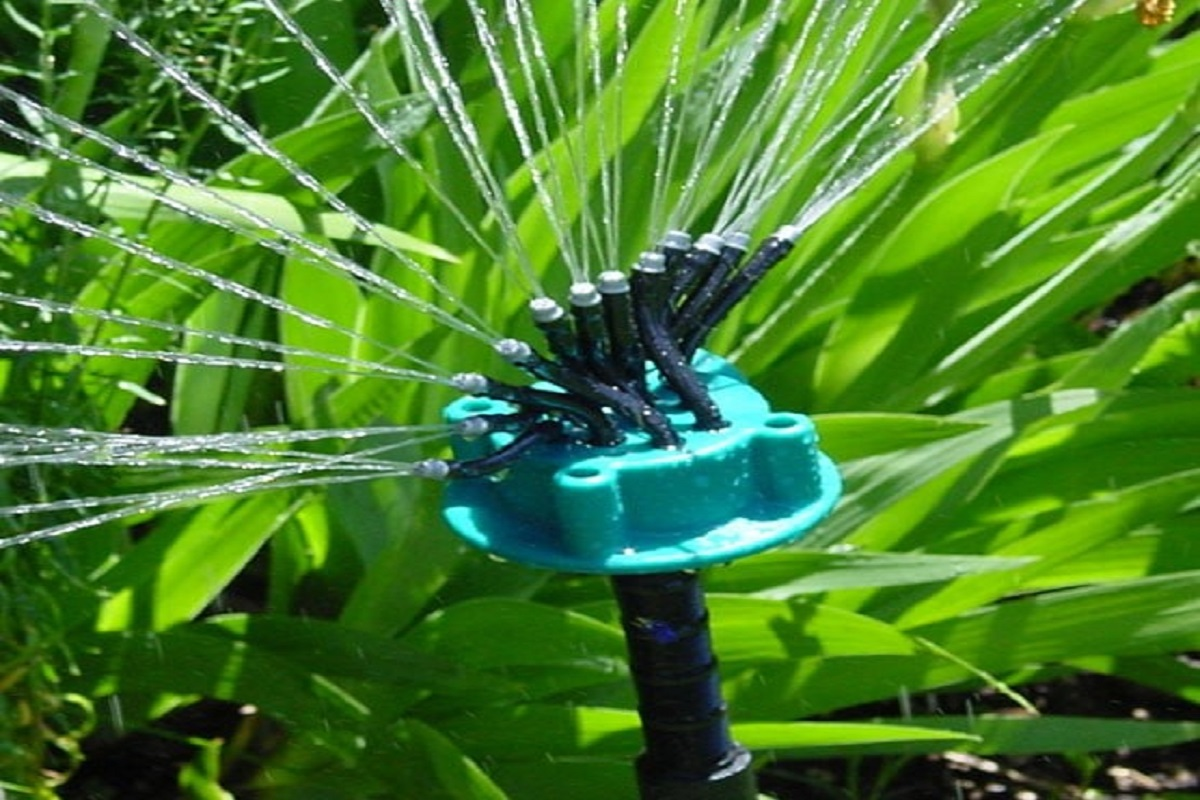 100 % Subsidy for Drip Irrigation