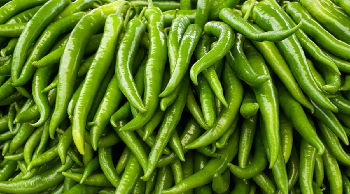Green chillies to prolong life - Infor