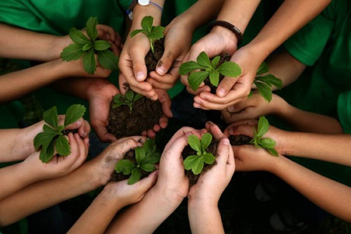 1.26 lakh saplings in 3 days across Tamil Nadu - Farmers who planted are amazing!