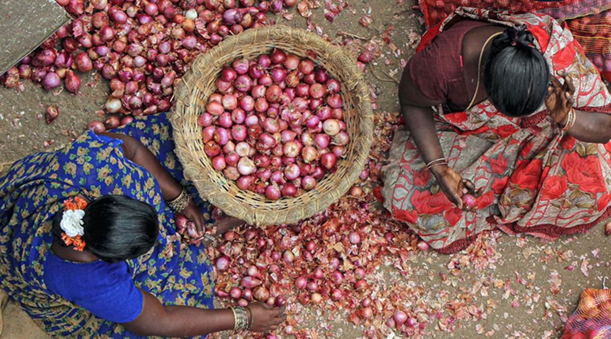 Ban on all types of onion exports-Federal Government Action