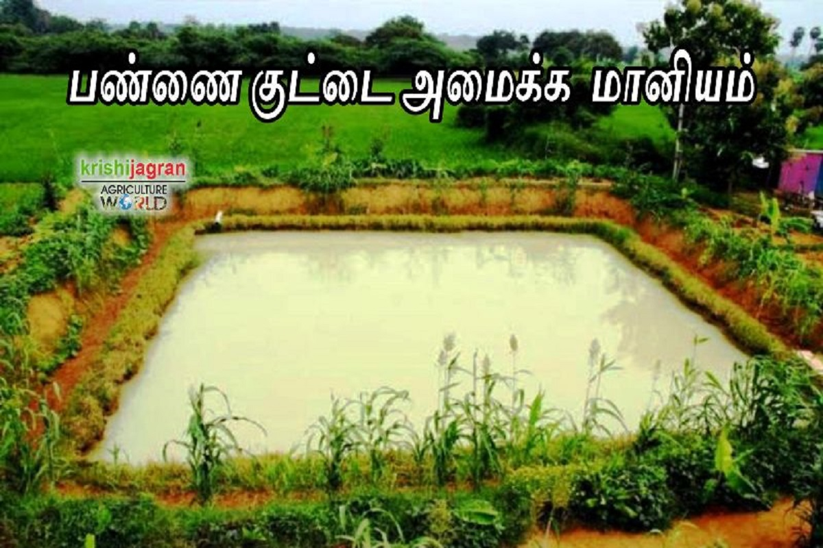 Rs 75,000 subsidy to set up a farm pond - Call for farmers