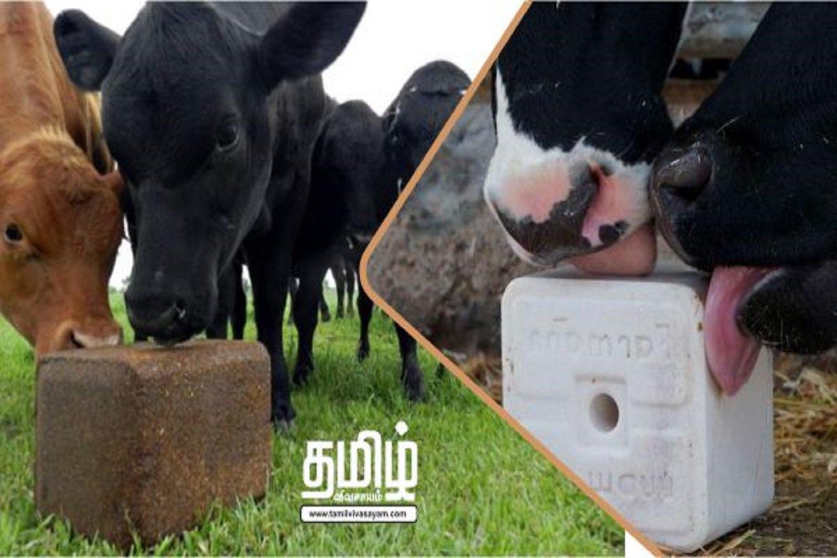 Livestock Nutrient Tumors - Make It Profitable At Home!