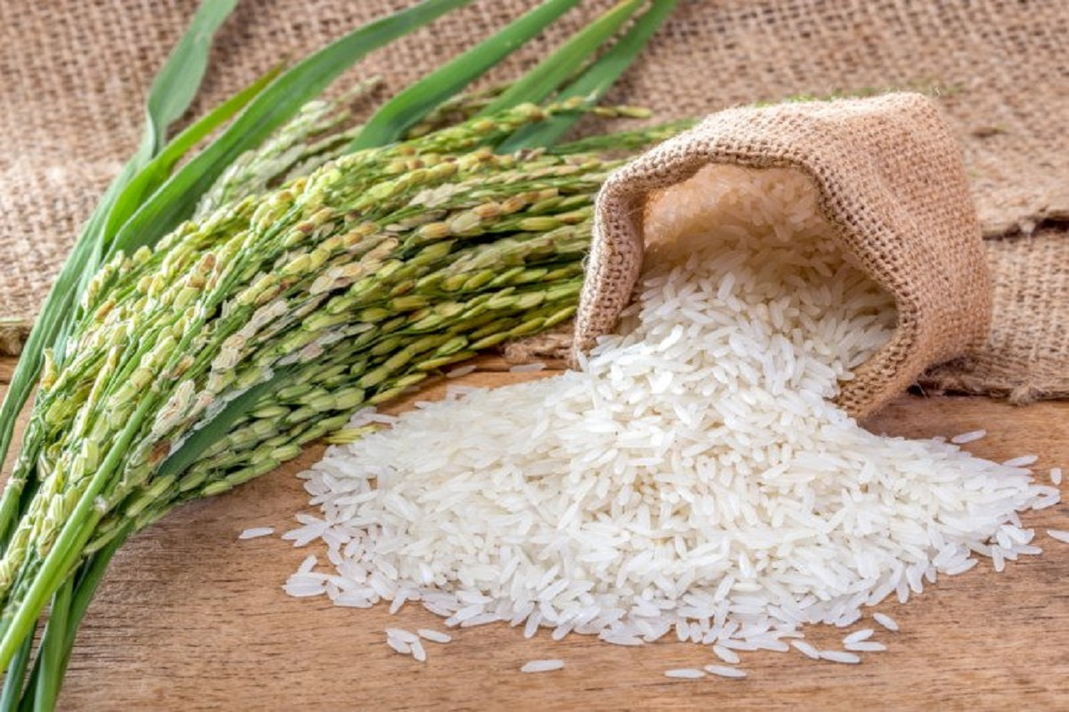 Procurement of rice in states including Tamil Nadu - Central Government has announced!