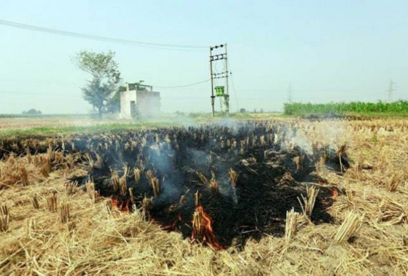 How to convert agricultural waste into compost at just Rs. 5