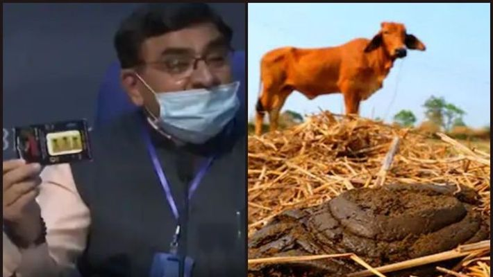 Cow dung chip that protects from cell phone radiation