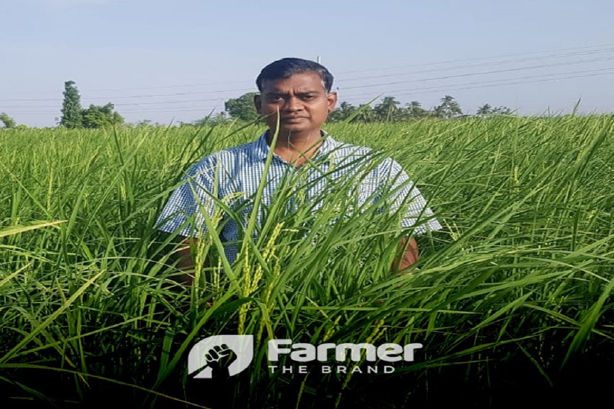 IT officer who makes a mark in natural agriculture by producing traditional paddy varieties!