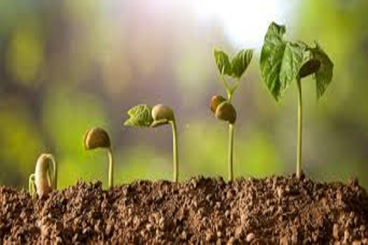 PMKSY:Call to take advantage of the micro-irrigation scheme!