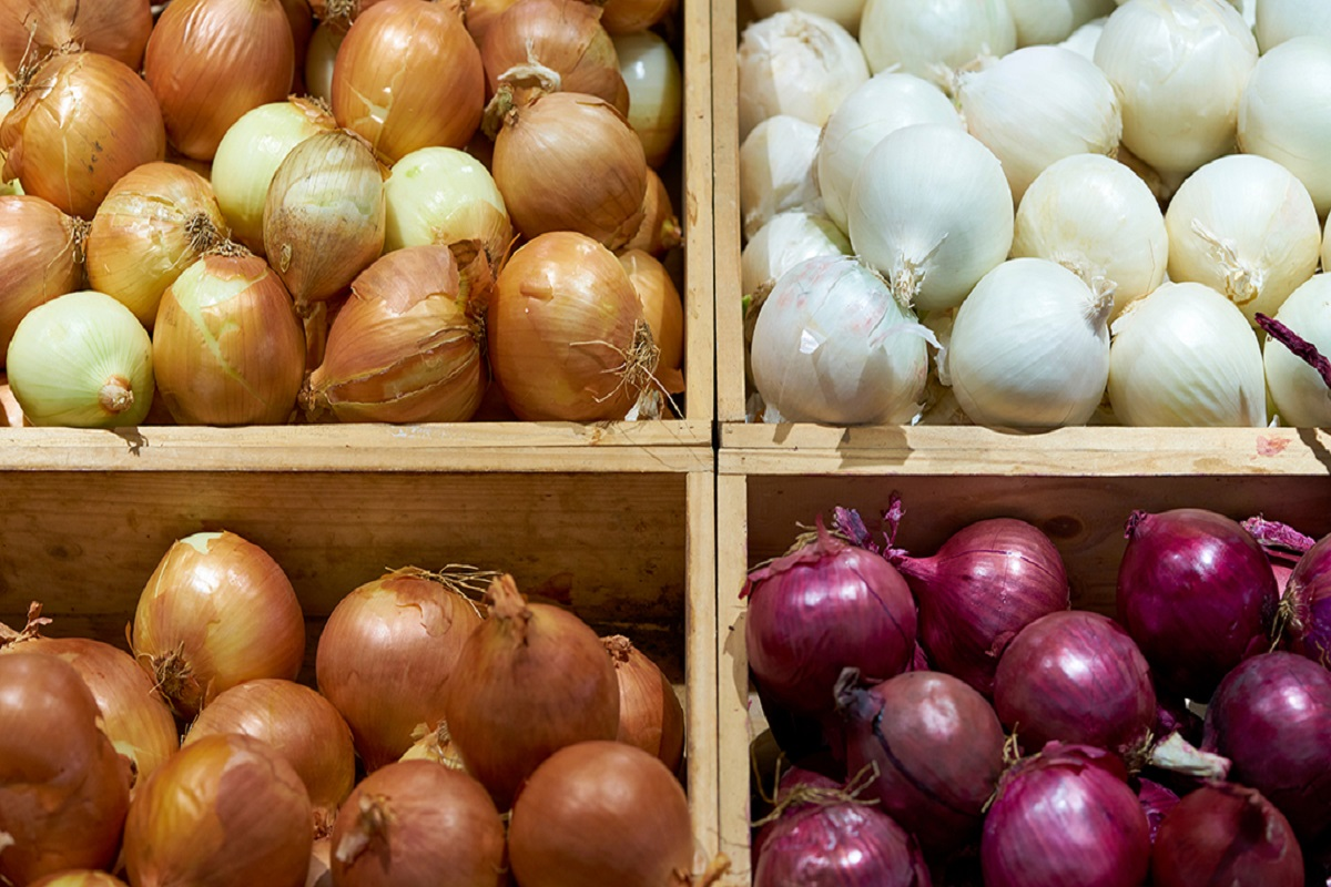 Onion Import Agreements - Finalized by NAFED!