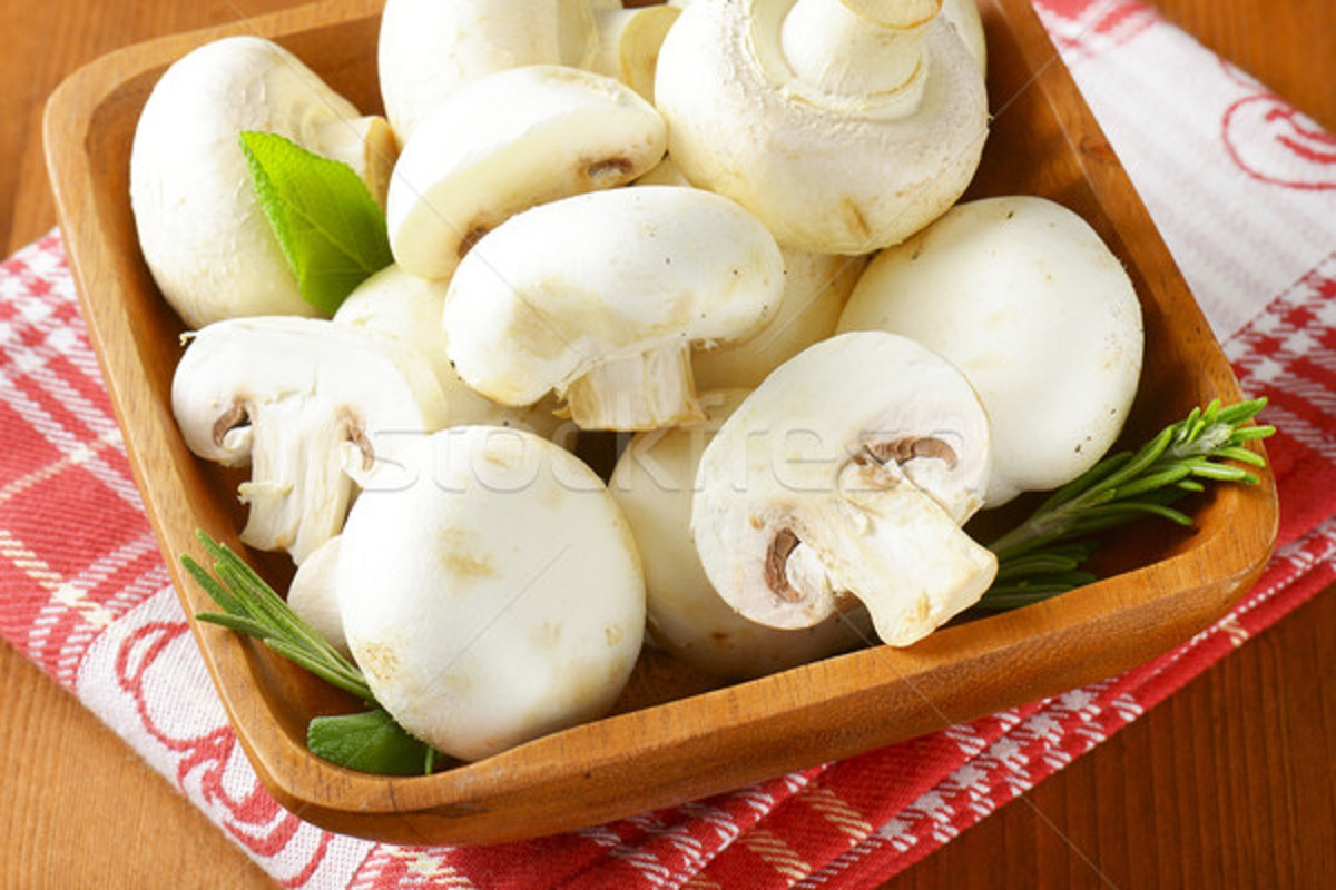 Who should not eat mushrooms!