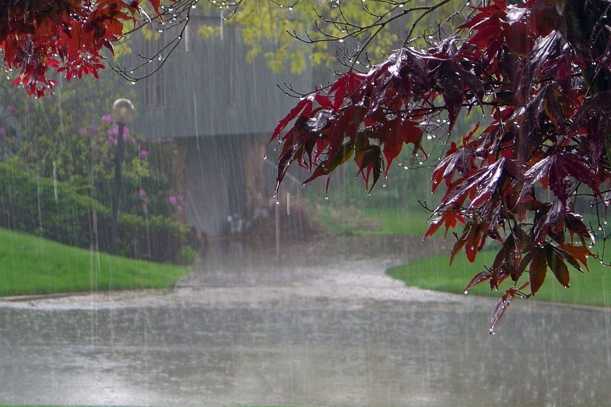 Chance of heavy rain in coastal districts