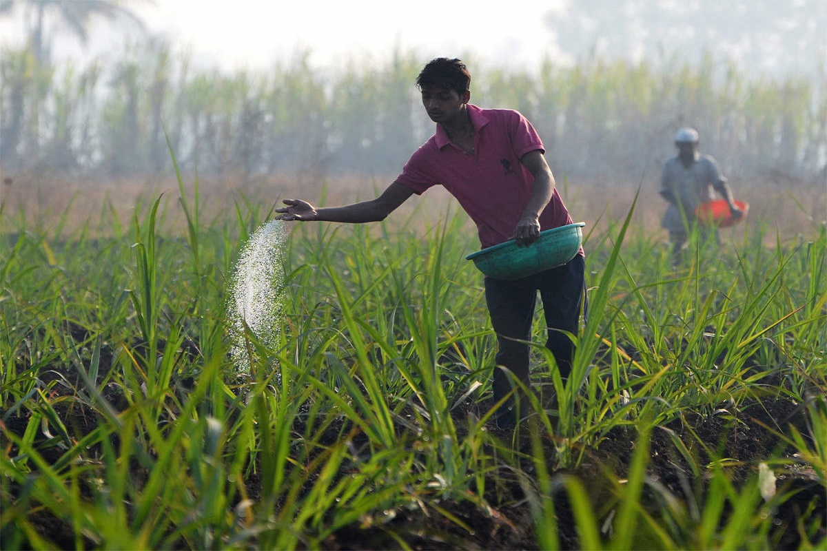 Strict action against companies forcing them to buy more fertilizers!