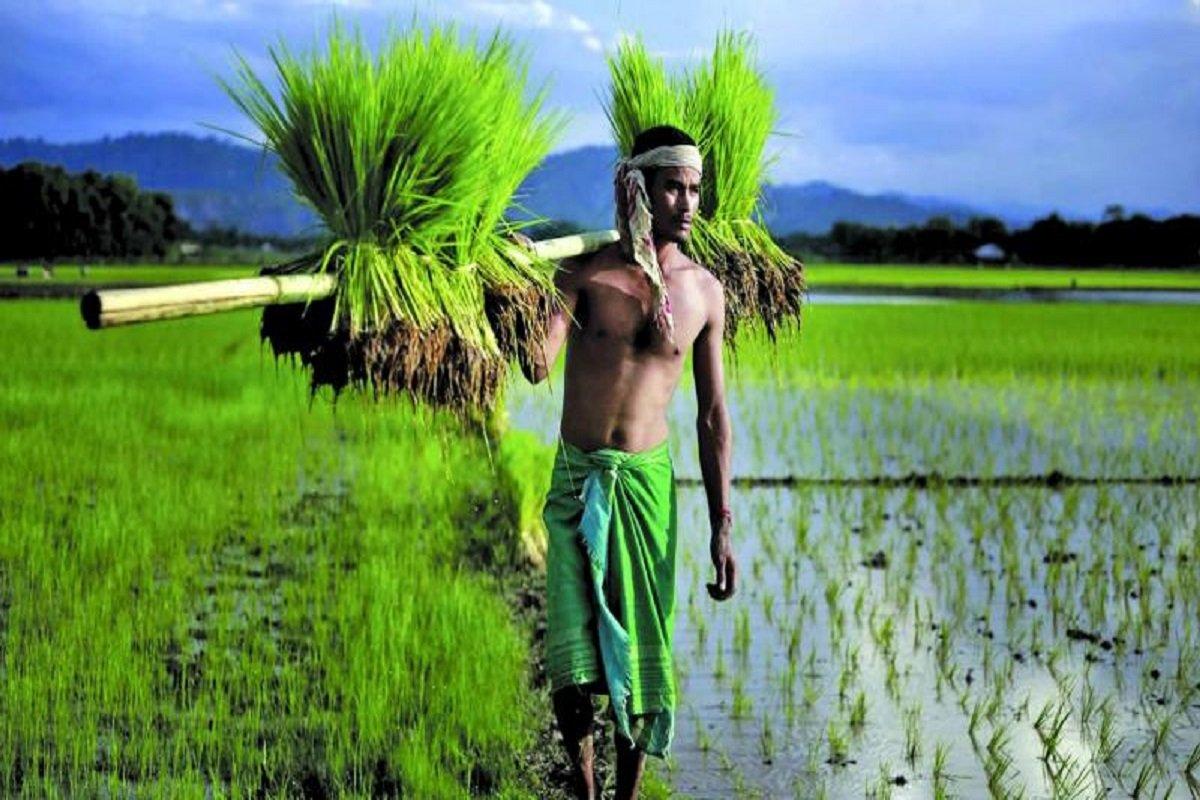 Attention Ranipet farmers!