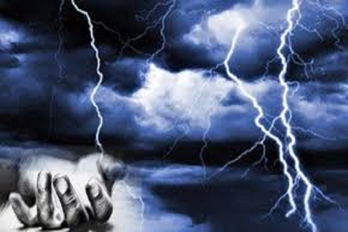 When Will Lightning Strike? - Introducing the Damini Processor to Know!