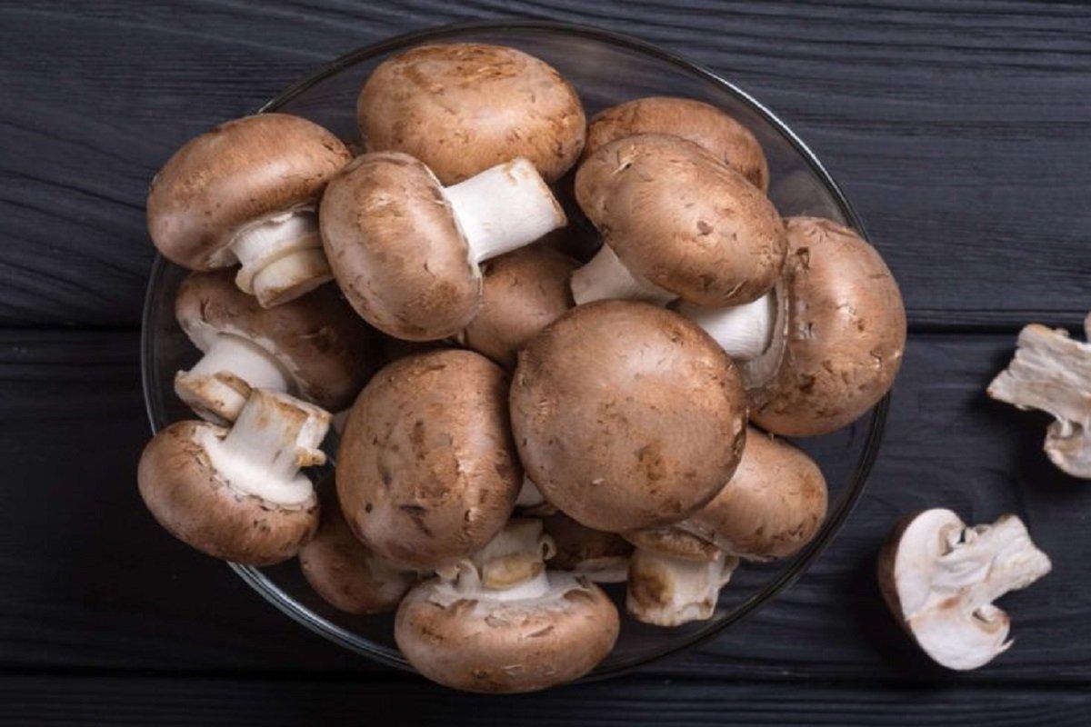 Mushroom cultivation training at TNAU on Dec. 5!